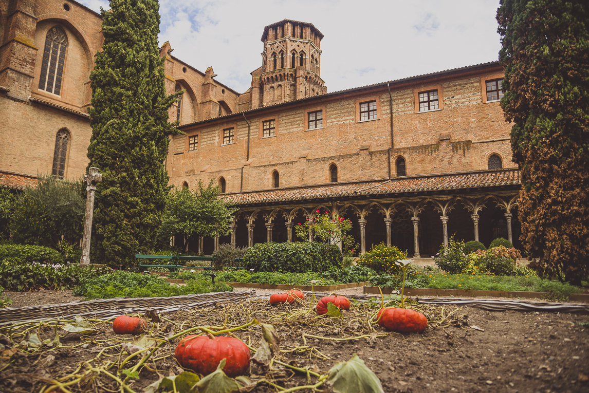 pink city architecture - pink building and pumpkins in foreground - Musée des Augustins, Toulouse, France