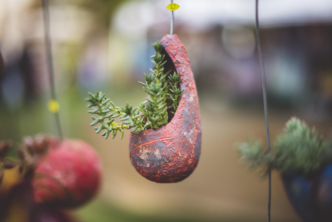 rozimages - photographie évènementielle - Expo Vente de Végétaux Rares 2015 - récipient sculpté et suspendu pour petites plantes succulentes - St Elix le Chateau, France