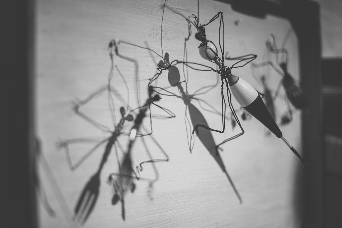 rozimages - photographie évènementielle - Salon des Arts et du Feu 2015 - insectes sculptés en fil de fer, et ombres - Martres-Tolosane, France