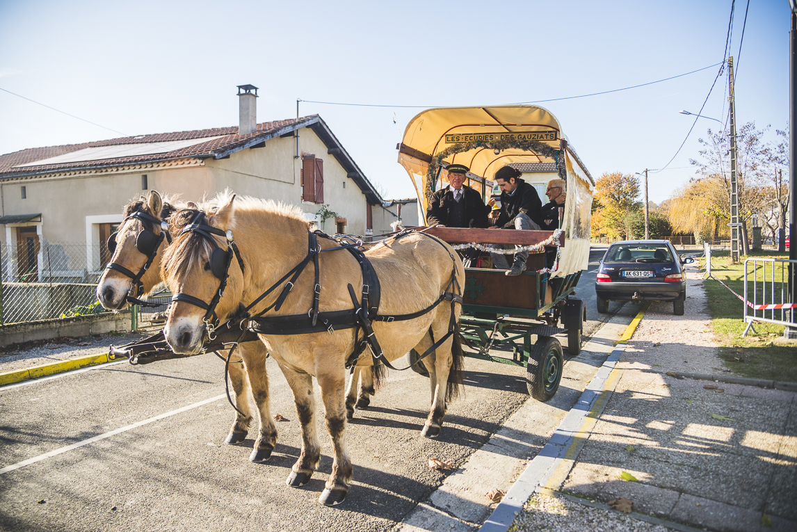 rozimages - event photography - community event - Christmas Market 2015 - horse drawn carriage - Mondavezan, France