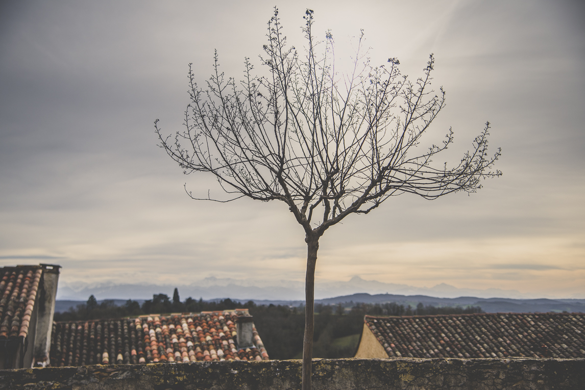 Photo of the French town of Aurignac - bare tree in town and sky - Aurignac Photographer