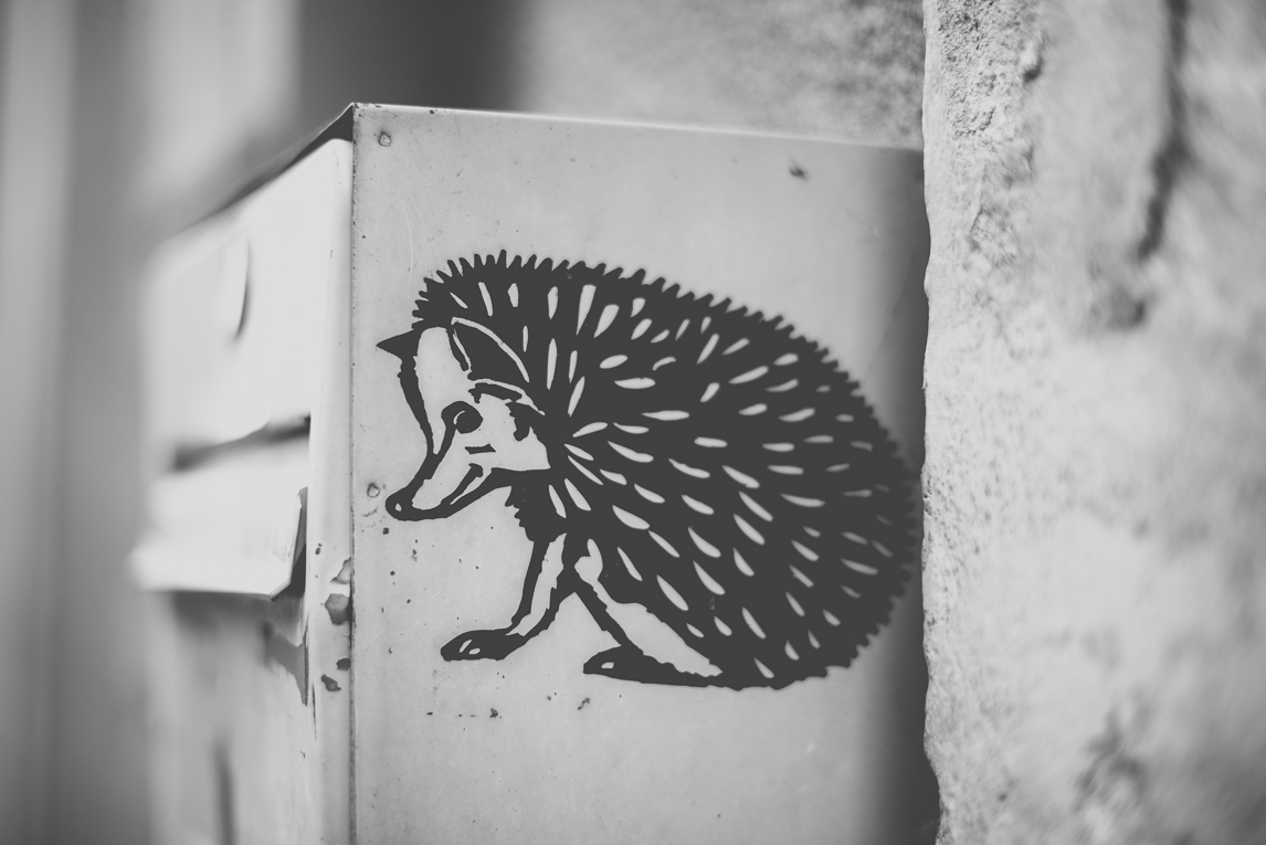 Photo of the French town of Aurignac - hedgehog sticker - Aurignac Photographer