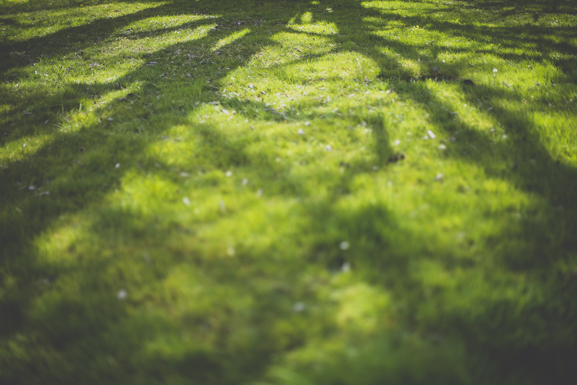 Photo of the French town of Saint-Gaudens - shadows on grass - Saint-Gaudens Photographer