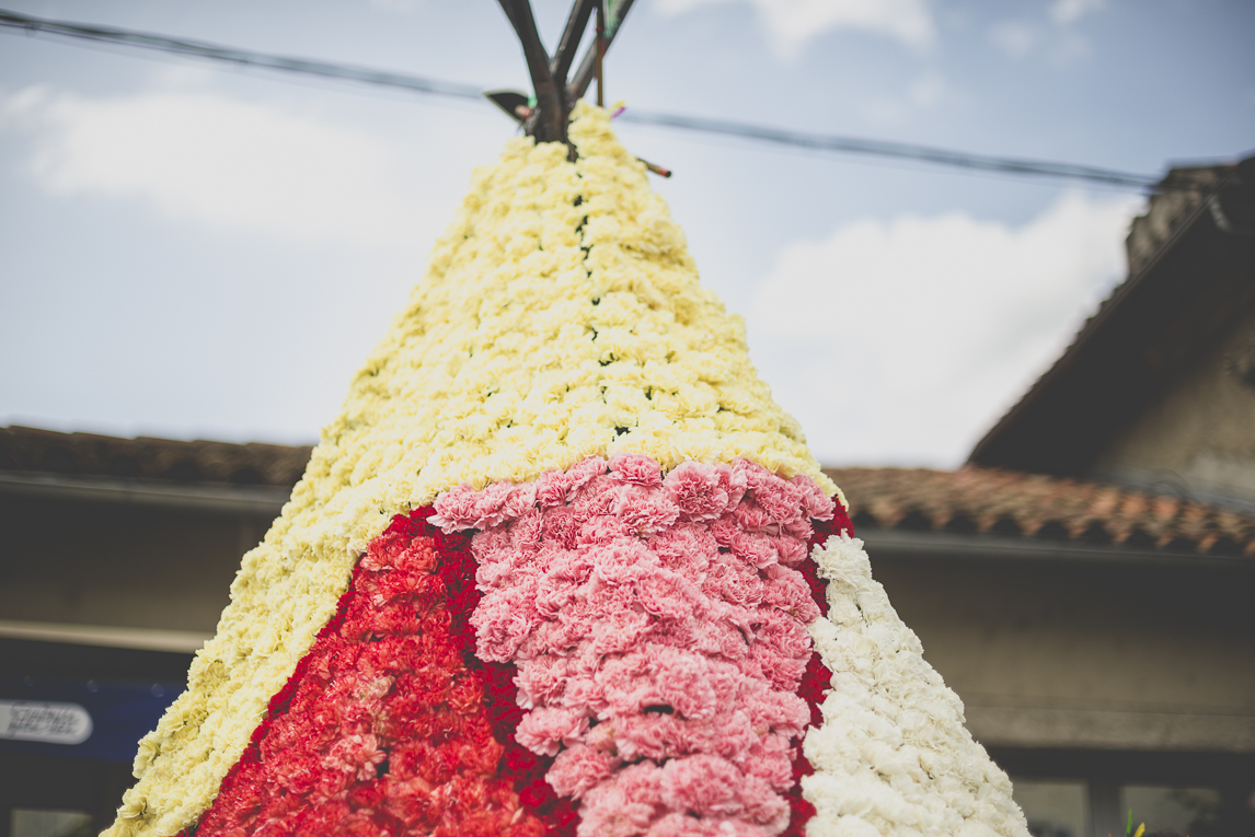 Fête des fleurs Cazères 2016 - statue en forme de tente faite de fleurs - Photographe évènementiel