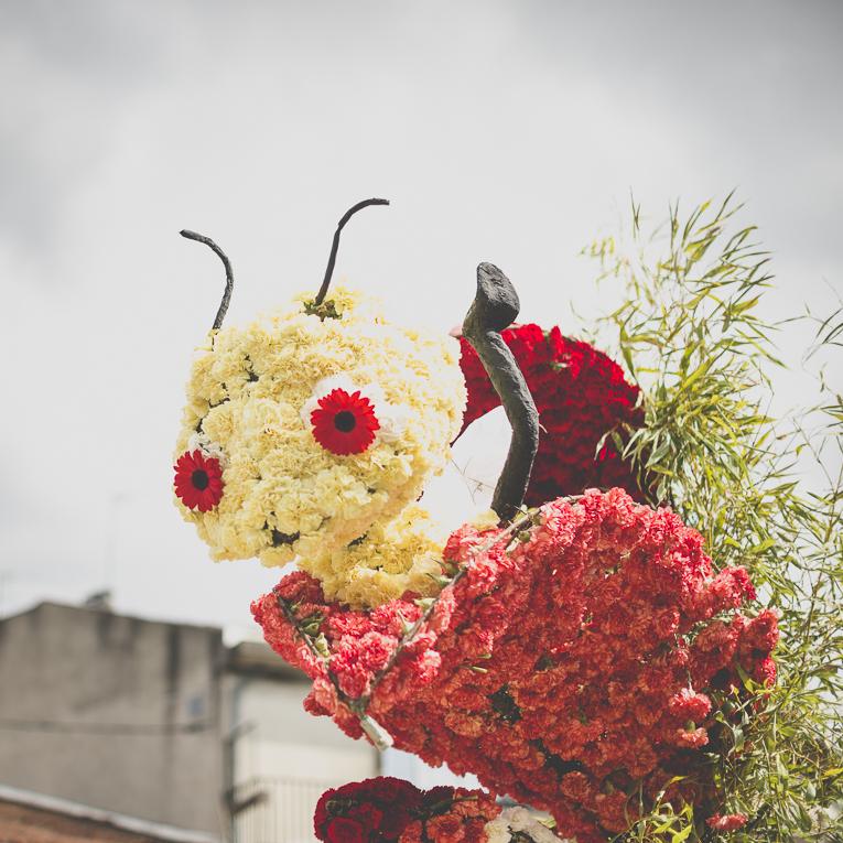Fête des fleurs Cazères 2016 - statue de défilé faite de fleurs d'oeillets - Photographe évènementiel