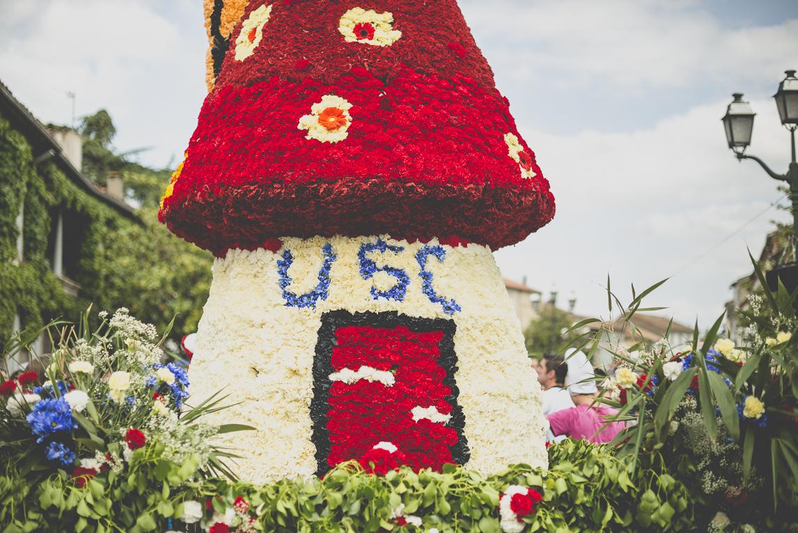 Fête des fleurs Cazères 2016 - statue en forme de champignon sur char décoré - Photographe évènementiel