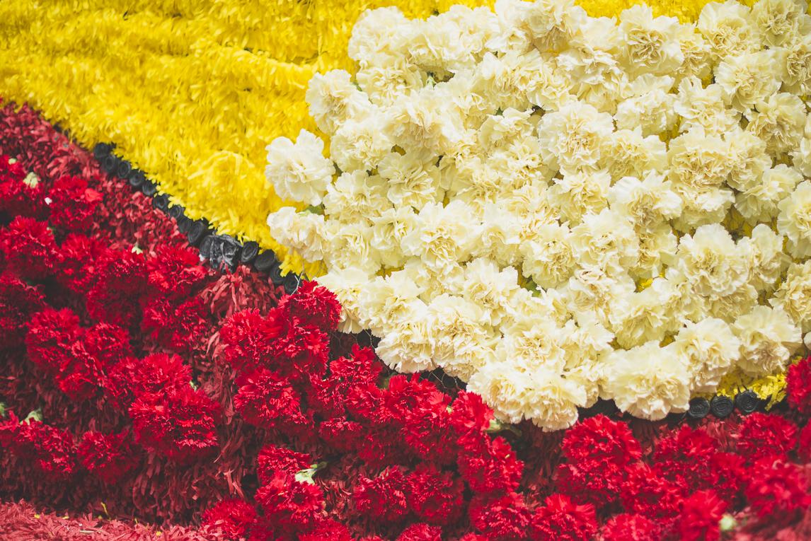 Fête des fleurs Cazères 2016 - char décoré de fleurs - Photographe évènementiel