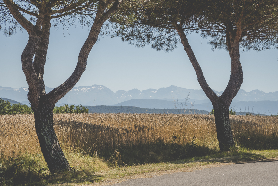 Wedding Photography South West France - view on the Pyrenees mountains - Wedding Photographer