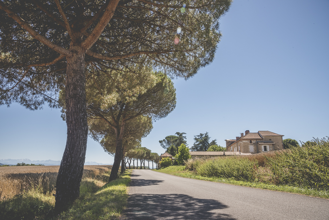 Wedding Photography South West France - property and tree-lined road - Wedding Photographer