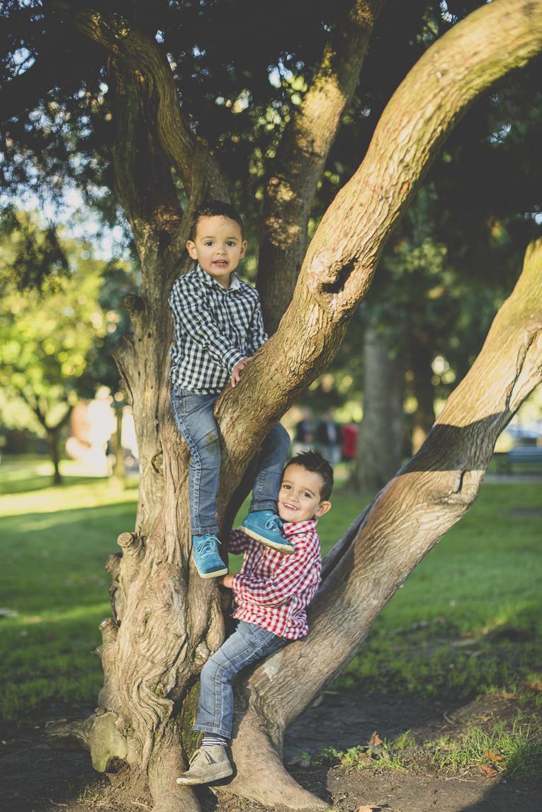 Séance photo famille - deux garçons dans un arbre - Photographe famille