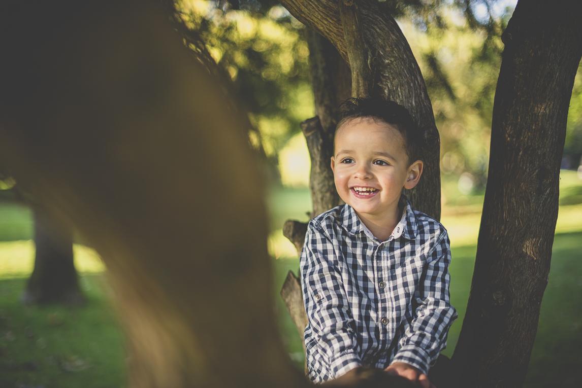 Séance photo famille - petit garçon dans un arbre - Photographe famille