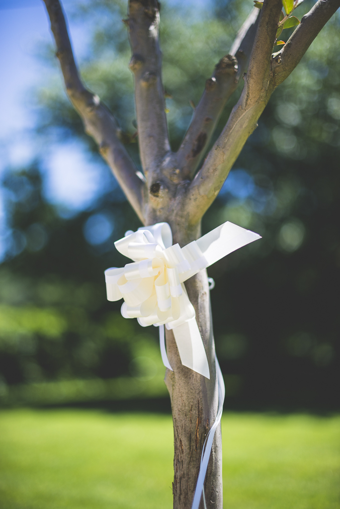 Wedding Photography French château - ribbon on tree - Wedding Photographer