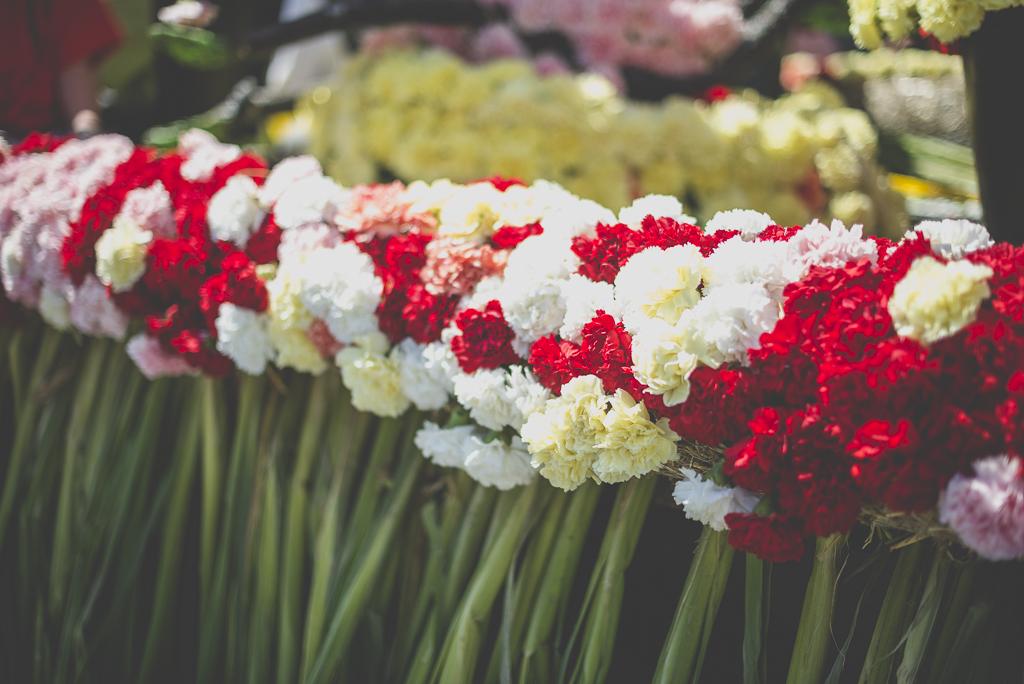 Fete des fleurs Cazeres 2018 - fleurs sur char fleuri - Photographe Haute-Garonne