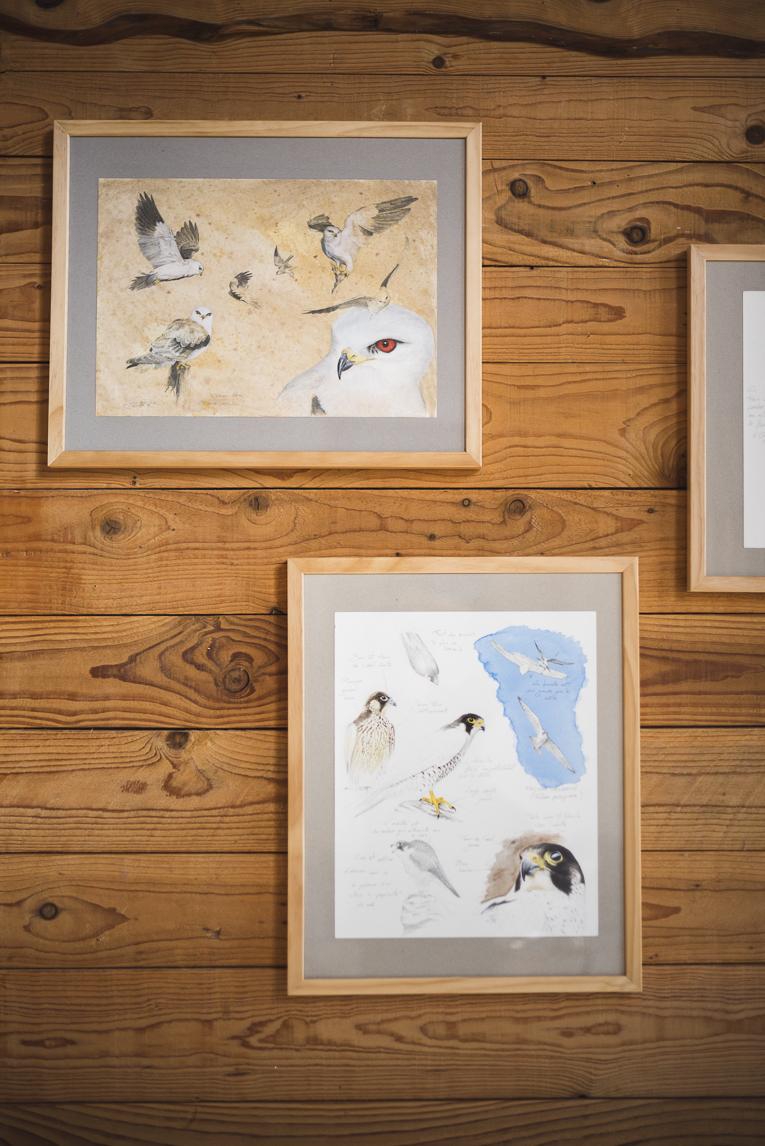 Séance photo chambres d'hôtes Ariège - dessins au mur - Photographe B&B