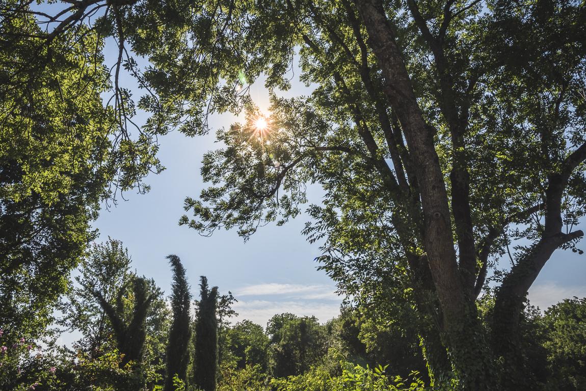 Séance photo chambres d'hôtes Ariège - jardin boisé et rayons du soleil - Photographe B&B