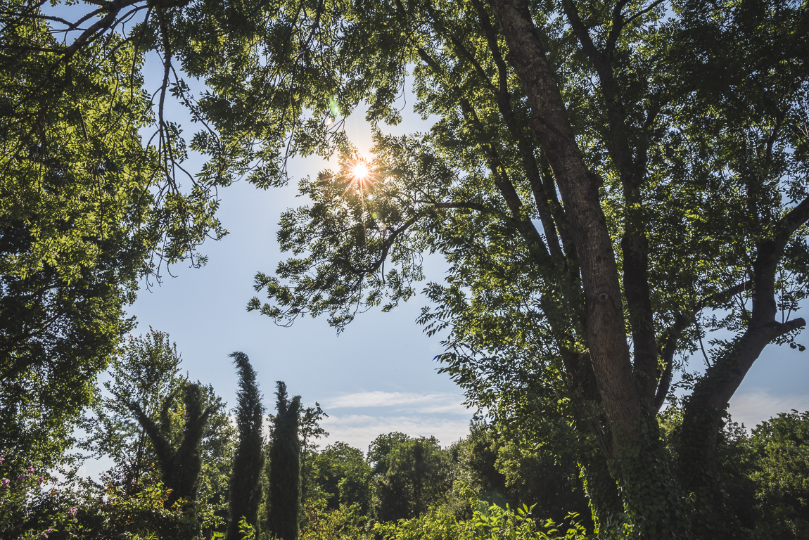 Photo-shoot B&B Ariège - jardin boisé et rayons du soleil - Photographer B&B