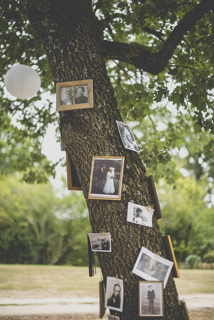 Reportage mariage Auch - arbre avec vieux portraits de famille - Photographe mariage Gers