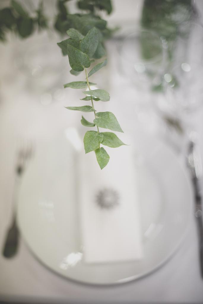 Reportage mariage Auch - décoration de table - verdure - Photographe mariage Gers
