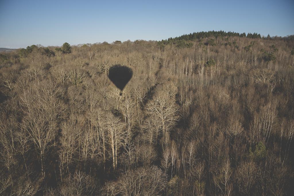 Photos vol montgolfière Haute-Garonne - ombre montgolfière sur forêt - Photographe Toulouse
