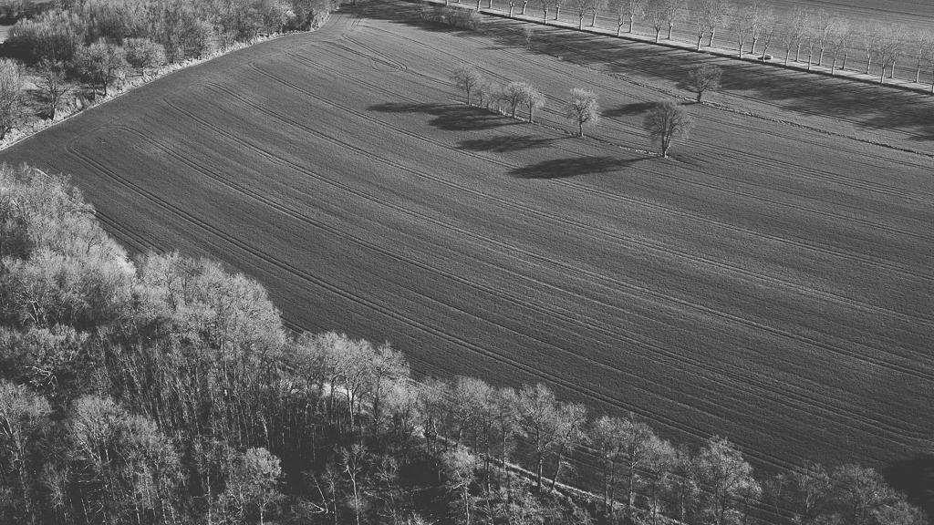 Photos vol montgolfière Haute-Garonne - champ noir et blanc - Photographe Toulouse