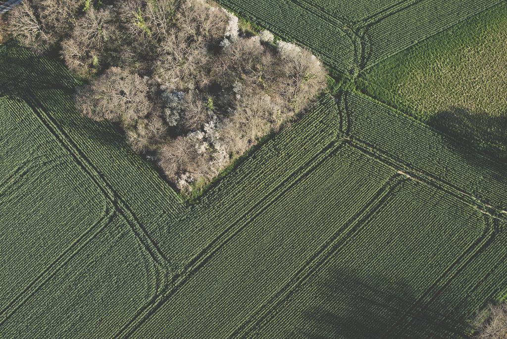 Photos vol montgolfière Haute-Garonne - lignes dans champs - Photographe Toulouse