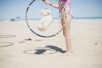 Family photo session on the beach - girl holding a hoop in which a little dog jumps - Family Photographer